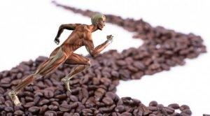 Efectos del café en el rendimiento deportivo.