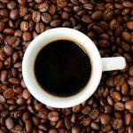 CAFÉ ARÁBICA Y ROBUSTA, COMO DIFERENCIARLAS?